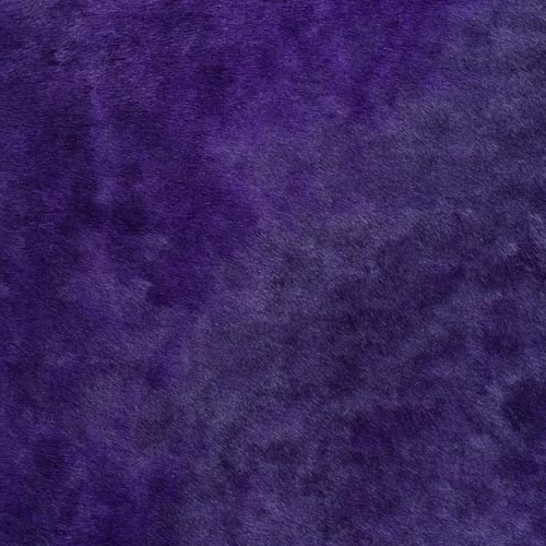 www.Koeien-Huid.nl Horsy Uni Violet