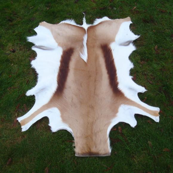 www.koeien-huid.nl